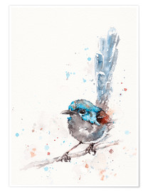 Poster  Mischief In The Making (Fairy Wren) - Sillier Than Sally