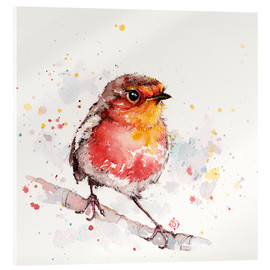 Acrylic print  Adventure awaits (robin red breast) - Sillier Than Sally