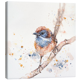 Canvas print  Lickity Split (Mallee Emu Wren) - Sillier Than Sally