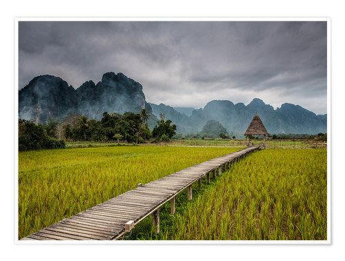 Premium poster way in paddy field 2