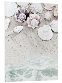 Foam board print  Beach with Shells