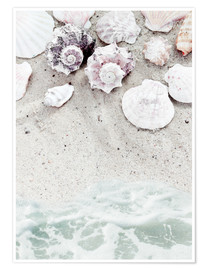 Premium poster Beach with Shells