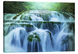Canvas print  Waterfall