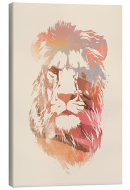 Canvas print  Desert lion - Robert Farkas