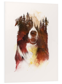 Foam board print  Nature lover - Robert Farkas
