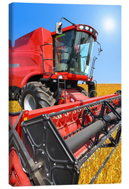 Canvas  Red Combine
