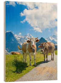 Wood print  Cows on the pasture