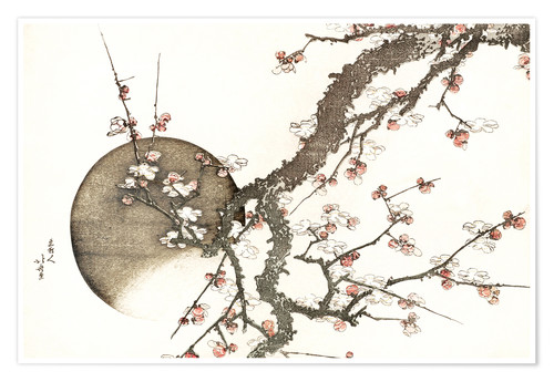 Premium poster Plum blossom and the moon