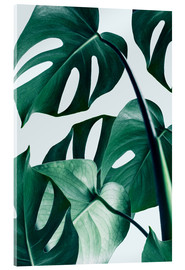 Acrylic glass  Monstera - Uma 83 Oranges