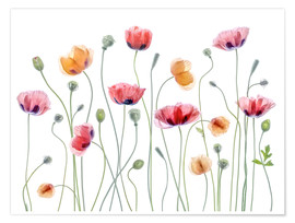 Premium poster  Poppy party - Mandy Disher