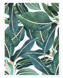 Premium poster  Botanical leaves - Uma 83 Oranges