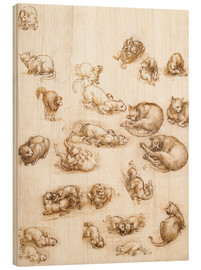 Wood print  Study of a dog and a cat - Leonardo da Vinci