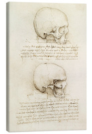 Canvas print  The skull - Leonardo da Vinci