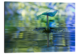 Aluminium print  Water drops with bokeh - Stephan Geist
