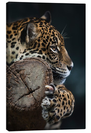 Canvas print  more restful Leopard
