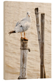 Wood print  Seagull on pole