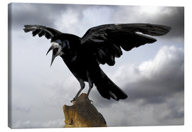 Canvas print  Crow before takeoff