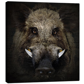 Canvas print  Wild boar