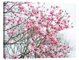 Canvas print  Pink Blooming