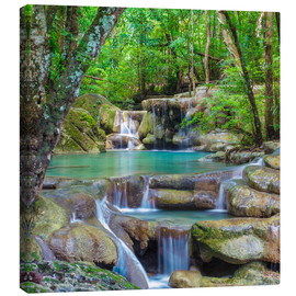 Canvas print  small waterfall in forest