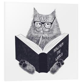 Foam board print  Reading cat - Valeriya Korenkova