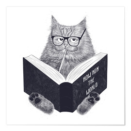 Premium poster  Reading cat - Valeriya Korenkova