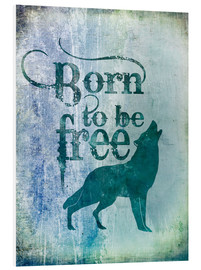 Forex  born to be free - Andrea Haase
