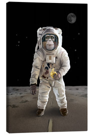 Canvas print  Spacemonkey - Achim Szabo