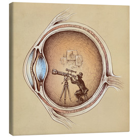 Canvas print  Extraordinary observer - Buko