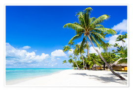Premium poster Palm beach in the South Pacific with white sand and blue sea