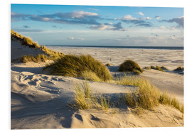 Foam board print  Landscape with dunes on the North Sea island Amrum - Rico Ködder