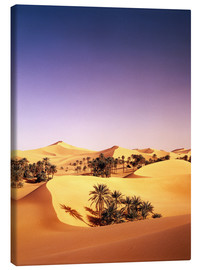 Canvas print  Palm grove in Algeria - Thonig