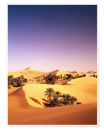 Premium poster  Palm grove in Algeria - Thonig