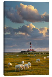 Canvas print  Lighthouse Westerhever, Cumulus clouds - Rainer Mirau