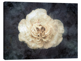 Canvas print  White rose superimposed with floral texture - Alaya Gadeh