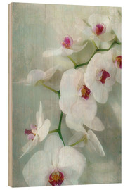 Wood print  Composition of a white orchid with transparent texture - Alaya Gadeh