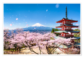 Premium poster Chureito Pagoda and Mount Fuji in spring, Japan