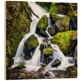 Wood print  Waterfall in the forest near Triberg, Black Forest - Jan Christopher Becke