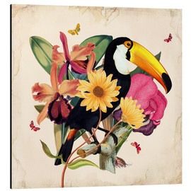 Aluminium print  Oh My Parrot XII - Mandy Reinmuth