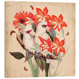 Wood print  Oh My Parrot XI - Mandy Reinmuth