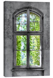 Canvas print  Window hope - jens hennig