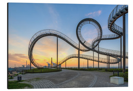 Aluminium print  Tiger and Turtle Duisburg - Michael Valjak