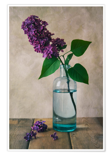 Premium poster Still life with fresh lilac flower