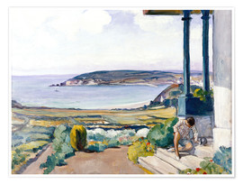 Premium poster  The Garden on the Morgat Bay - Henri Lebasque