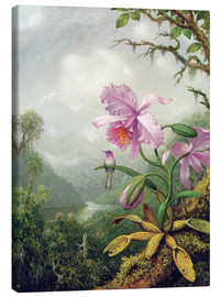 Canvas print  Hummingbird Perched on an Orchid Plant - Martin Johnson Heade