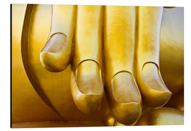 Aluminium print  Fingers of the Buddha