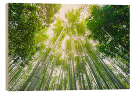 Wood print  Light falls through the bamboo forest