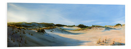 Foam board print  sandy neck - Jonathan Guy-Gladding