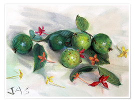 Premium poster  guavas and ixora2 - Jonathan Guy-Gladding