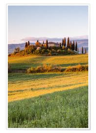 Premium poster Podere Belvedere at sunrise, Tuscany, Italy